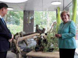 Daxue Consulting-Merkel and Jinping-China and Germany