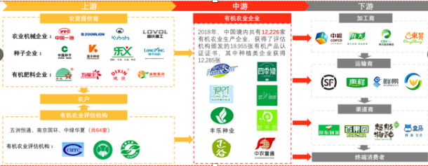 The vertical structure of the organic food industry in China and its component companies