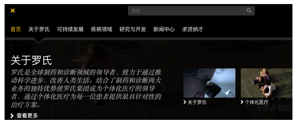 La Roche website page in Chinese
