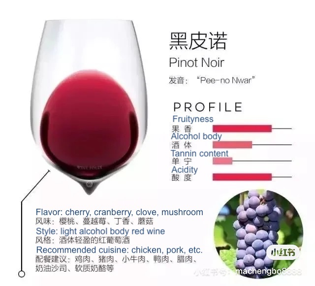 detailed graphics made by premium wine experts to help consumers visualize different grape variety China